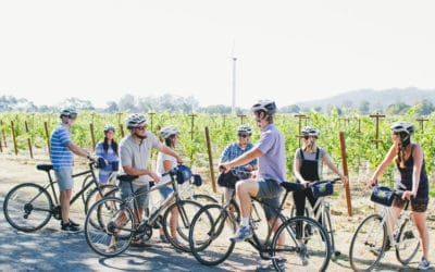 Top Ten Non-Wine Tasting Things to Do in The Napa Valley