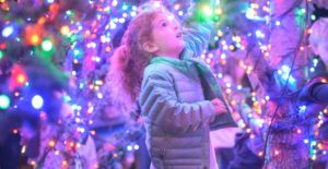 Virtual Yountville Town & Tree Lighting @ Yountville